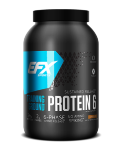 training ground protein 6 chocolate